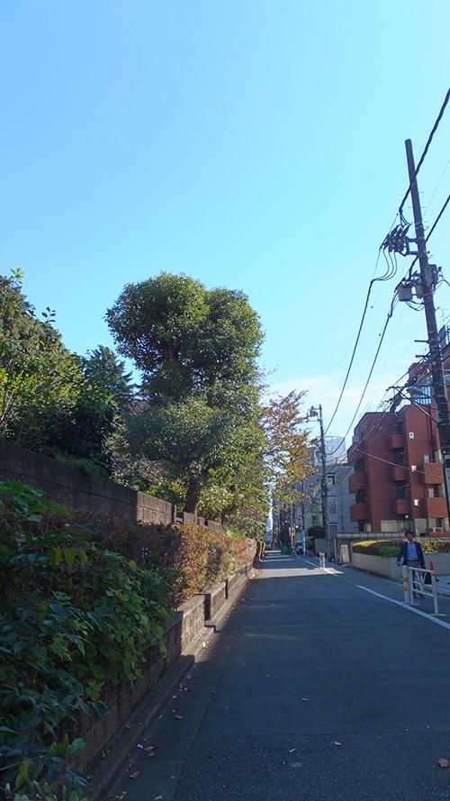 千駄ヶ谷門04